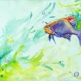 □  Риба